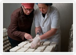 One of Our Buyers On Location Inspecting Goat Cheeses